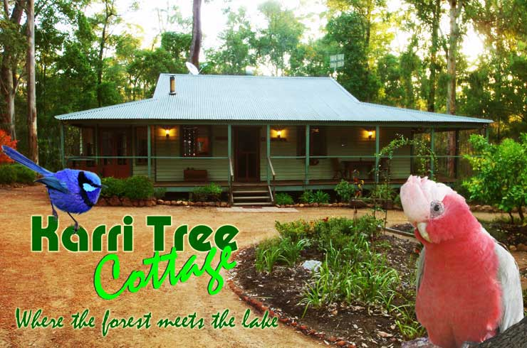 Karri Tree Cottage  0410 527 989