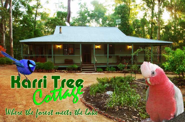 Karri Tree Cottage  0410 527 989